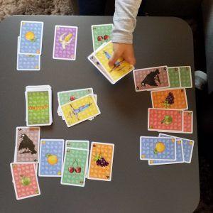 juego de mesa pajarracos